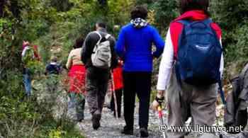 Sulle Alpi Apuane con il Cai di Grosseto: giornata all'insegna della natura - IlGiunco.net