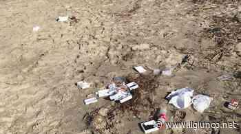 Contro i rifiuti in spiaggia a Castiglione e Grosseto parte la campagna di Legambiente Beach clean - IlGiunco.net