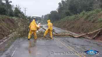 Chuva e vento causam destelhamentos e quedas de árvores em Capinzal e Ouro - Rádio Capinzal