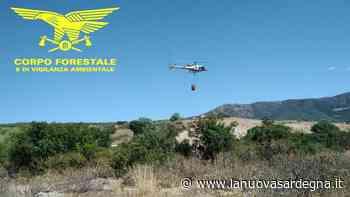 Incendio a Montresta, arriva l'elicottero - La Nuova Sardegna