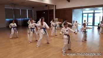 TAEKWONDO – Ferien-Training ist gestartet - Tulln - meinbezirk.at