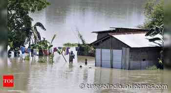 Assam floods: Death toll rises to 35; over 13 lakh people affected