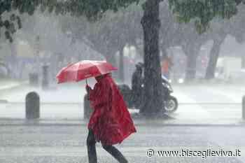 Allerta meteo per maltempo su Bisceglie e sul territorio pugliese - BisceglieViva