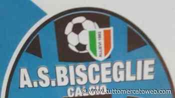 Serie C, gare di ritorno dei playout. Il Bisceglie saluta il professionismo: quinta retrocessa - TUTTO mercato WEB