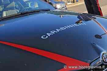 Inchiesta Dda, Carabiniere residente a Bisceglie ai domiciliari - BisceglieViva