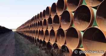 Alberta premier believes presidential hopeful Joe Biden could be swayed to support Keystone XL pipeline