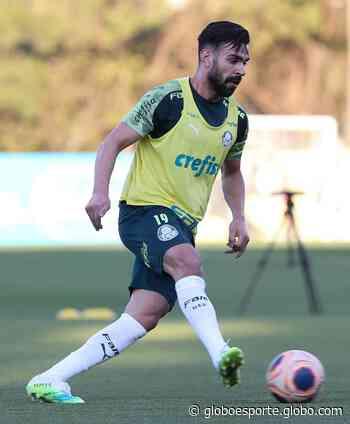 Palmeiras faz treino com bola no novo gramado artificial da Academia - globoesporte.com