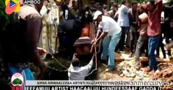 Ethiopia's PM accuses dissidents of taking up arms in unrest - Estevan Mercury