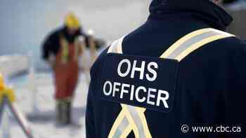 OHS investigates after woman, 23, dies tree planting in northern Alberta