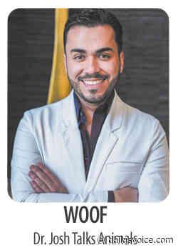 Woof! Dr. Josh talks animals • 07-03-20 - Dallas Voice