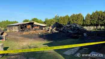 Barn fire kills sanctuary farm animals near Chatham-Kent - CBC.ca