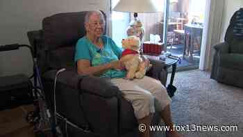 Robotic animals help isolated seniors find companionship during pandemic - FOX 13 Tampa Bay