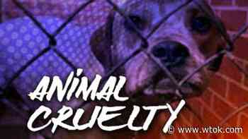 New animal cruelty bill will protect animals in Mississippi like never before - WTOK