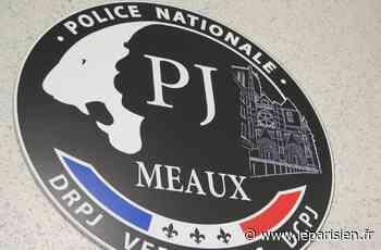 Mitry-Mory : envoyée par courrier, la cocaïne a atterri… dans les mains des douaniers - Le Parisien