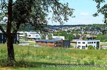 Gewerbegebiet in Flacht: Grüne fordern Stopp im Neuenbühl - Leonberger Kreiszeitung