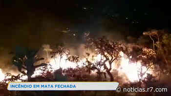 Incêndio em mata fechada quase atinge casas em Belo Horizonte - HORA 7
