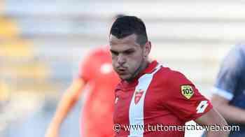 Como, sorpasso sul Palermo per l'attaccante Brighenti del Monza - TUTTO mercato WEB