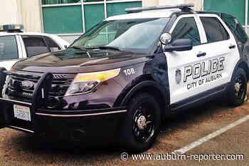 Woman bitten by puppy-shipping scam   Auburn police... - Auburn Reporter