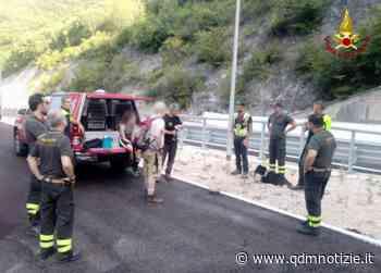 FABRIANO / Persi nel bosco, scatta l'intervento dei vigili del fuoco - QDM Notizie