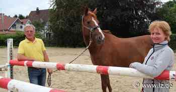 Eschenbrucher Reitturnier fällt Pferdekrankheit Druse zum Opfer | Lokale Nachrichten aus Blomberg - Lippische Landes-Zeitung