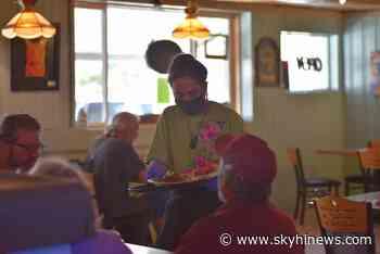 Fat Cat Cafe opens in Granby, hopes diners leave feline good - Sky Hi News
