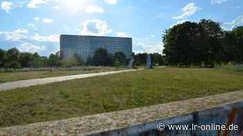 Landesgartenschau 2025: Hoyerswerda plant Bewerbung für Ausstellung - Lausitzer Rundschau