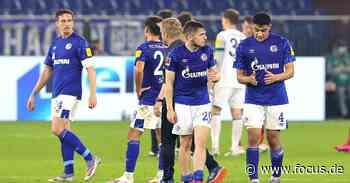 Gehaltsobergrenze im Fußball: Für Schalke sinnvoll, für Bundesliga der Untergang - FOCUS Online