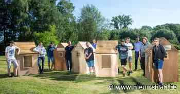 Leerlingen maken houten huisjes voor provincie (Zottegem) - Het Nieuwsblad