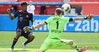 Leverkusen - FC Bayern im Live-Stream: DFB-Pokalfinale live im Internet sehen - FOCUS Online