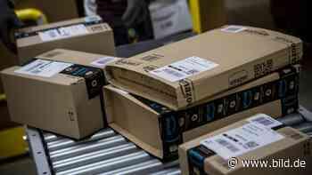 Widerwärtige Angebote - Warum verkauft Amazon Kinder-Sexpuppen? - BILD
