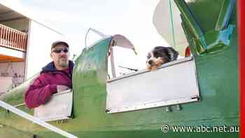 Air of the dog: Sky's the limit for Bongo and his vintage biplane