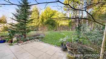 L'appartement de la semaine : un rez-de-jardin à Saint Cloud - Les Échos