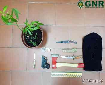 GNR Setúbal identificou jovem que ameaçou e agrediu, outro, com um machado - Infocul