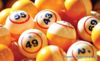 Agipronews.it | Lotto, a Carrara (MS) vinti oltre 40mila euro - Agipronews