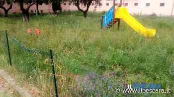Area giochi abbandonata dal Comune, succede a Montesilvano [FOTO-VIDEO] - IlPescara
