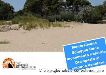 Montesilvano. Spiaggia Dune monumento naturale, ok tecnico, scelta ora spetta al Sindaco. - Giornale di Montesilvano