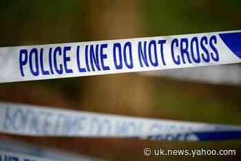Stephen Morrison murder: Man arrested on suspicion of killing brother of TOWIE star Lauren Goodger's ex boyfriend