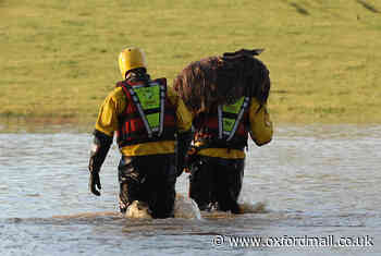 Remember When: RSPCA saved sheep caught in flood in West Oxfordshire