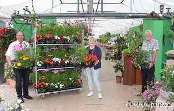 Der Werbeinteressenring lässt Blumen sprechen - Eggenfelden - Passauer Neue Presse
