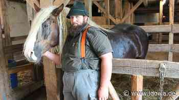 Diesmal bei Kollnburg: Pferdeschänder schlägt wieder zu - idowa