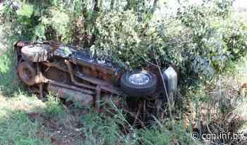 Caminhão carregado com suínos e F250 colidem perto de Santa Helena - CGN