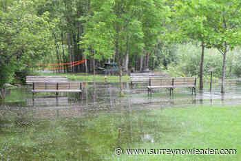 B.C.'s major rivers surge, sparking flood warnings - Surrey Now-Leader - Surrey Now-Leader