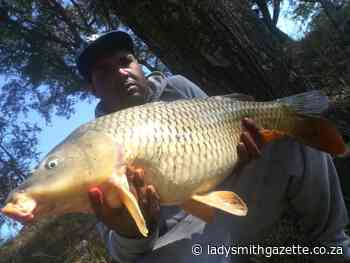 Excited to be fishing again and landing monster catches - Ladysmith Gazette