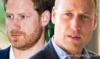 Prince William heartbreak: Duke desperately trying to reconnect with Harry in recent calls - Express