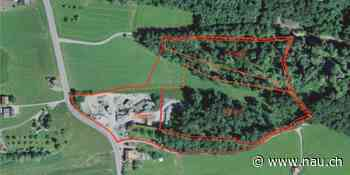 Eschenbach: Projekt «Abbau- und Deponieprojekt Sonnenfeld» - Nau.ch
