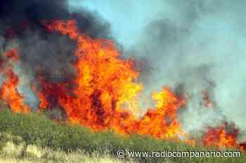 80 operacionais e quatro meios aéreos combatem incêndio em Aljustrel - Rádio Campanário