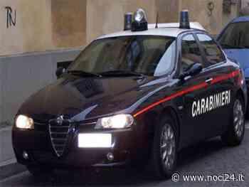 Putignano - Carabinieri sequestrano armi e droga, 2 arresti - NOCI24.it