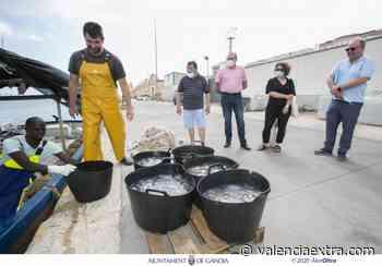 El Ayuntamiento de Gandia y la Cofradía de Pescadores del Grau reeditan el acuerdo para la recogida de medusas de las playas - València Extra