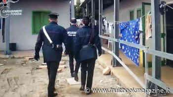 Foggia, braccianti sfruttati e frode al fisco, arrestato imprenditore - Fruitbook Magazine