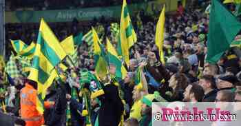 Spud Thornhill: Unwanted records, but Norwich fans must keep the faith | Pink Un - Norwich City Football Club News - PinkUn